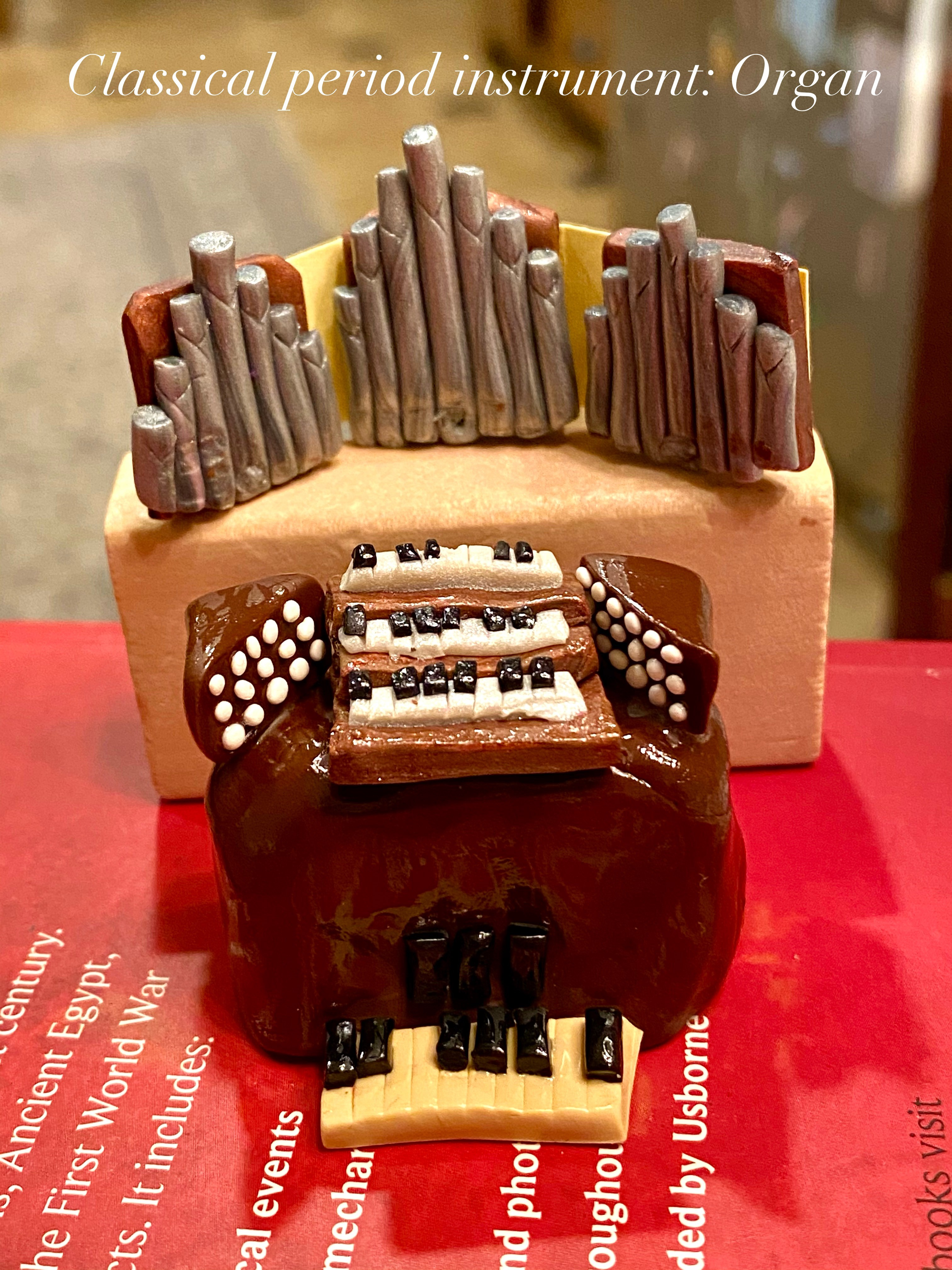 Organ Model made out of clay